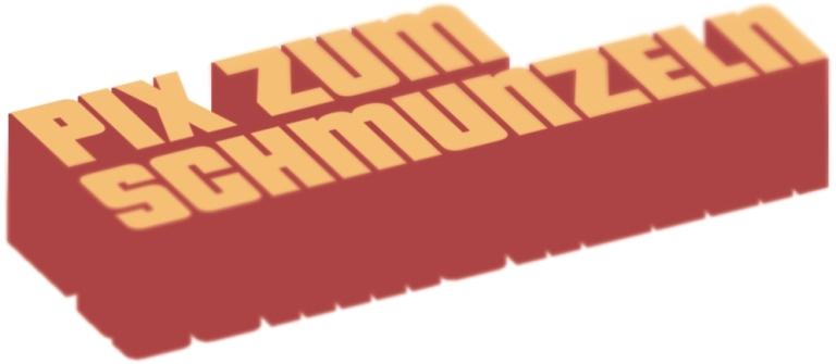 Beitrag - LOGO - PixZumSchmuneln - Cube